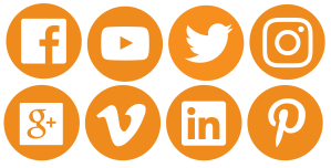 viva-logo-social-media-icons-02